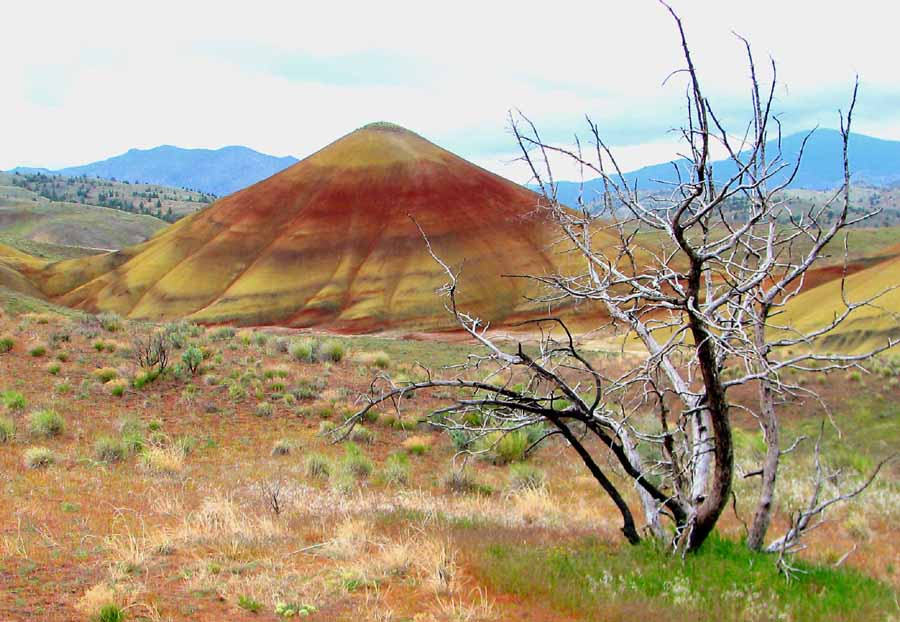 painted hills 6b small