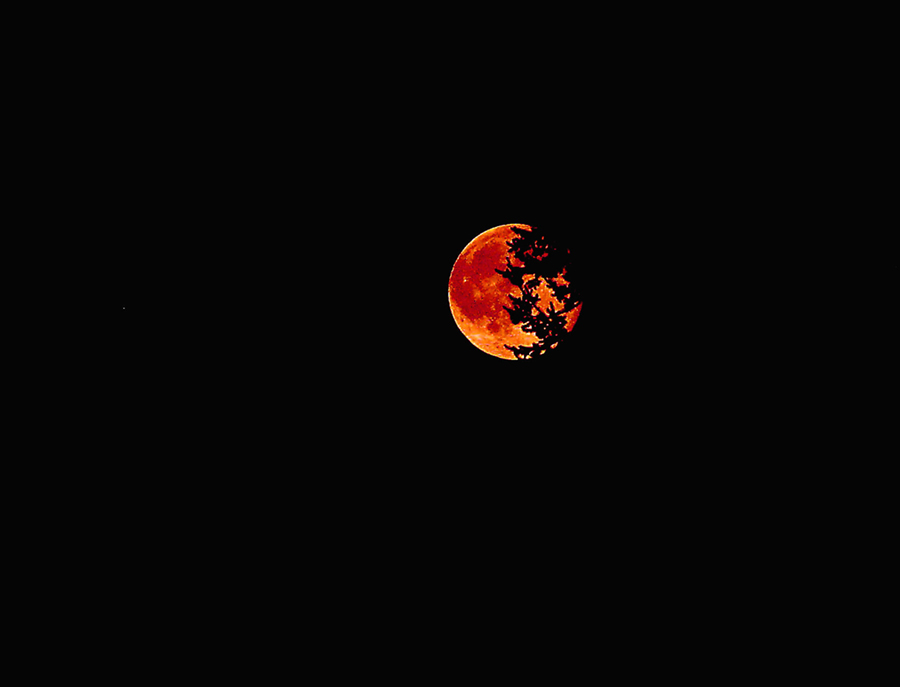 red moon online - photo #44